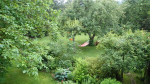 Hammock in the gardens of Pension Buntspecht bed & breakfast in Chorin