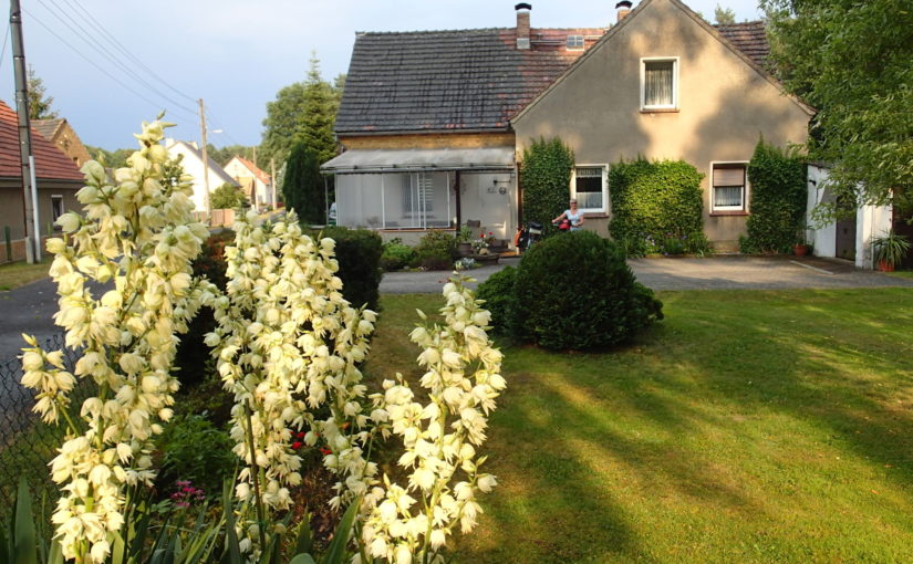 Holiday apartment in Krauschwitz near Bad Muskau